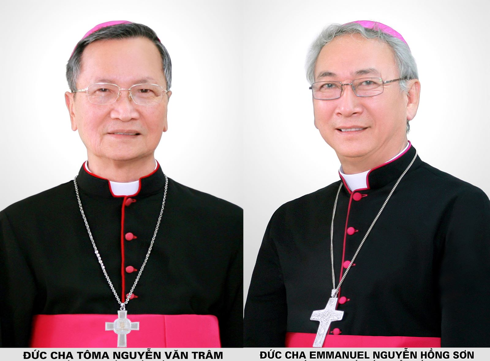 Đức cha Emmanuel Nguyễn Hồng Sơn: TÂN GIÁM MỤC CHÁNH TÒA GIÁO PHẬN BÀ RỊA