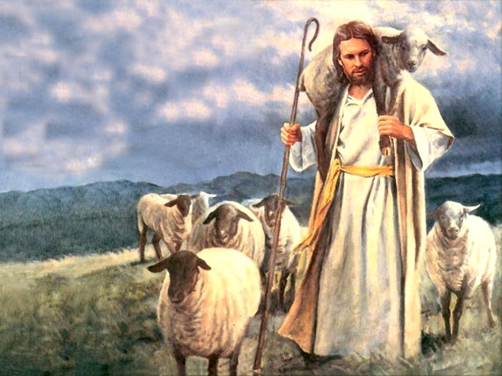 Chiên Thiên Chúa - Ảnh minh hoạ 2