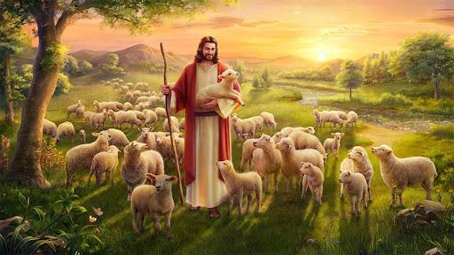Được sống dồi dào (03.5.2020 – Chúa Nhật Chúa Chiên Lành) – Giao Xu Thien An